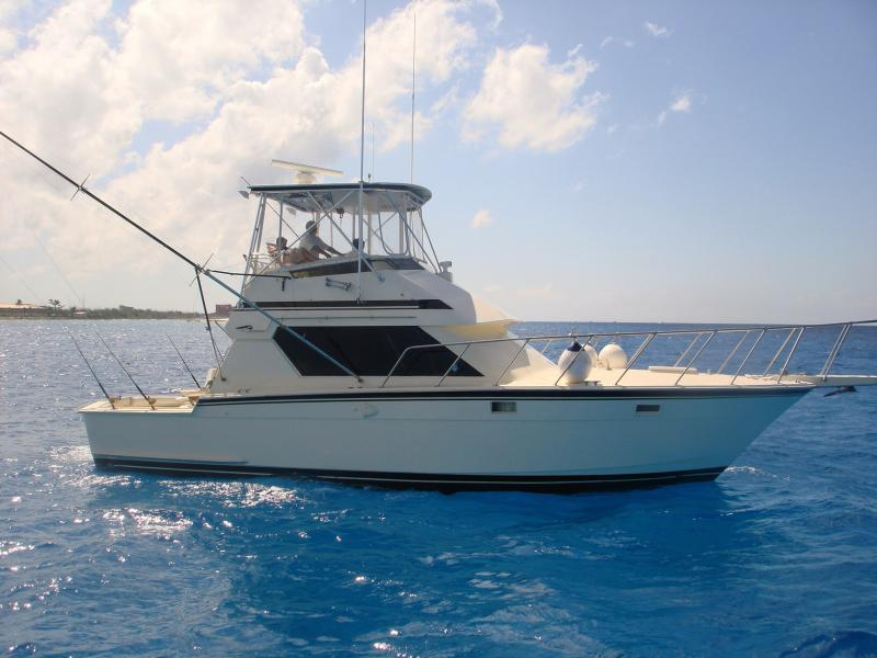 Sail fishing in jaco costa rica simply your best fishing for Deep sea fishing costa rica